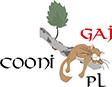 Cooni-Gaj *PL | Hodowla kotów rasy Maine Coon